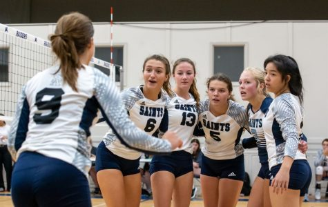 Volleyball is Looking for Revenge