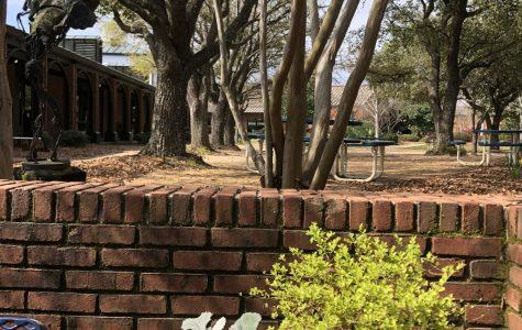 Corona Closes Schools